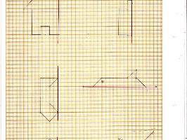 Les maths de Mascotte: la symétrie