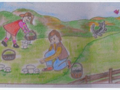 Les enfants cueillent des champignons