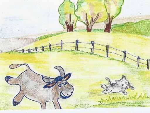 Le taureau court après Mascotte